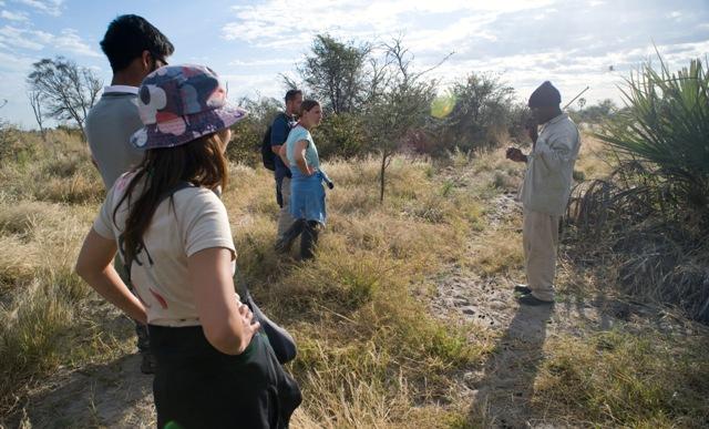 cape-town-garden-route-to-vf-zambia