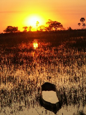 sunset-delta.jpg